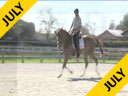 Clayton Fredericks<br> Riding<br> Houdouni<br> Assisted by<br> Cristoph Hess<br> 13 yrs. Old Thouroughbred<br> Training: 4th Level<br> Owner: Katie Ruppel<br> Duration: 45 minutes