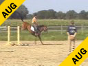 Jeroen Dubbeldam<br>Assisting<br> Dermus Kuipers<br>Querida<br>Selle Francais<br>4 yrs. old  Mare<br>Training: Training Level Novice<br>Duration: 23 minutes