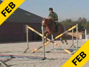 Piet Raijmakers<br>Assisting<br> Akihiko Okabe<br>PinoLina<br>KWPN<br> 9 yrs. old Dutch Mare<br>Training: 1.40 meters<br>Duration: 40 minutes