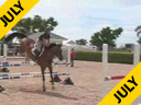 Available on DVD No.13<br>Beezie Madden<br>Riding & Lecturing<br>Danny Boy<br>by Clinton<br>Belgium Warmblood<br>7 yrs. old Gelding<br>Training: 1.35 meters<br>Duration: 29 minutes