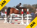 Aaron Vale<br> Riding & Lecturing<br> Verdi<br> 8 yrs. old Belgium WarmBlood<br> Training: Speed Class 1.35 meters<br> Duration: 11 minutes
