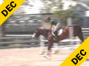 Beezie Madden<br> Riding & Lecturing<br> Conquest<br> 15 yrs. old Stallion<br> KWPN<br> Training: 1.5 meters<br> Duration: 23 minutes