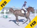 Beezie Madden<br> Riding & Lecturing<br> De Silvio<br> KWPN<br> 11 yrs. old Gelding<br> Training: GP level<br> Duration: 27 minutes