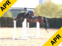 Ludger Beerbaum<br>Day 2<br> Riding & Lecturing<br> All Inclusive<br> 7 yrs.old  Gelding<br> Training: 1.60 meter<br> Duration: 38 minutes