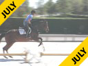Available on DVD No.7<br>Sandy Ferrell<br>Riding & Lecturing<br>Prestwick<br>Oldenburg 3 yrs. old<br>Training: Baby Green Hunter<br>Duration: 25 minutes