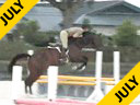 Geoff Teall<br>Riding & Lecturing<br>Candy Man<br>Oldenburg <br>7 yrs. old Gelding<br>Training Green Hunter<br>Duration: 32 minutes