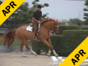 Scott StewartRiding & LecturingCrown PointGerman Warmblood3 yrs. old GeldingTraining: Pre GreenDuration: 18 minutes