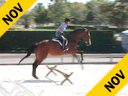 "Sandy Ferrell<br>Riding & Lecturing<br>Echo Bay<br>Thoroughbred Gelding<br>7 yrs. old<br>Training: 3'3""<br>Duration: 21 minutes"