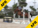 Geoff Teall<br>Riding & Lecturing<br>Tarquin<br>Thoroughbred<br>14 yrs. old Gelding<br>Training: Adult Hunter<br>Owner: Lilla Ward<br>Duration: 35 minutes