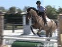 Sandy Ferrell<br> Riding & Lecturing<br> Banjo<br> Warmblood<br> 19 yrs. old Gelding<br> Training: Adult  Amature Hunter<br> Owner: Lynn Evangelista<br> Duration: 11 minutes